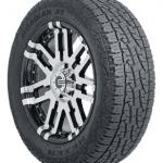 Nexen Roadian A/T Pro RA8 Radial Tire